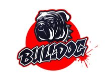 Logo capo del bulldog, emblema su fondo scuro Fotografie Stock Libere da Diritti