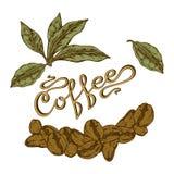 Logo Coffee Royaltyfri Fotografi