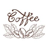Logo Coffee Royaltyfria Bilder