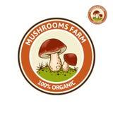 Logo coloré avec le champignon de Porcini sur la clairière de forêt Photo stock