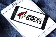 Logo d'équipe de hockey de glace de coyotes de l'Arizona Photo libre de droits