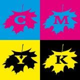 Logo d'érable de CMYK Photo stock