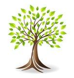 Logo d'arbre généalogique d'écologie illustration stock