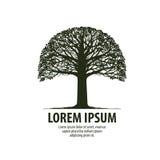 Logo d'arbre Silhouette d'icône de chêne Nature, symbole d'écologie Illustration de vecteur Images libres de droits