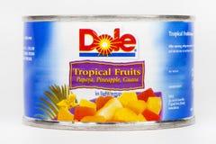 Logo d'entreprise alimentaire de Dole Photos stock