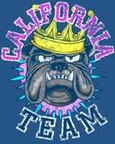 Logo d'équipe de la Californie Image libre de droits