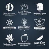 Logo de beauté et de santé, icônes et éléments de conception Images libres de droits