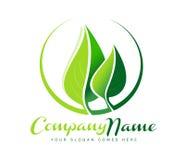 Logo de feuille Photo stock