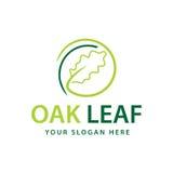 Logo de feuille de chêne Photo stock
