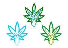 Logo de feuille infusions, herbe, soins de la peau, marijuana, symbole, icône de cannabis, remède, et conception de l'avant-proje Photos stock