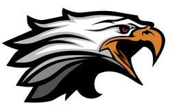 Logo de mascotte de tête d'aigle de vecteur Photo stock