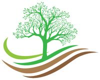 Logo de nature d'arbre Photos stock