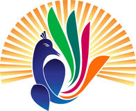 Logo de paon Image stock