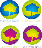 Logo de société d'arbre Photos stock