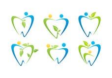 Logo de soins dentaires, vecteur de scénographie de symbole de nature de personnes de santé d'illustration de dentiste Image libre de droits