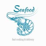 Logo dei frutti di mare del gamberetto di schizzo di vettore Fotografia Stock