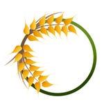 Logo dei grani del grano Fotografie Stock Libere da Diritti
