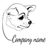 Logo del cane della chihuahua Fotografia Stock