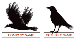Logo del corvo Fotografie Stock