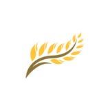Logo del grano Fotografia Stock