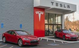 Logo del modello di Tesla Immagini Stock Libere da Diritti