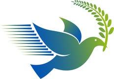 Logo del piccione Immagini Stock