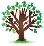 Logo dell'albero della mano Immagine Stock