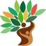 Logo dell'albero genealogico Fotografia Stock