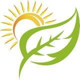 Logo della foglia Immagini Stock