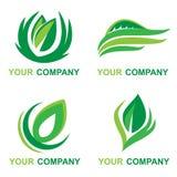 Logo della foglia con il vostro nome di società Fotografie Stock
