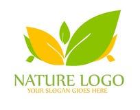 Logo della foglia della natura Fotografie Stock