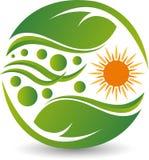 Logo della foglia di Sun Fotografia Stock
