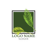 Logo della palma Fotografie Stock Libere da Diritti