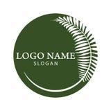 Logo della palma Fotografia Stock