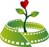 Logo della pianta del film Immagine Stock Libera da Diritti