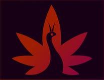Logo della società del pavone Fotografia Stock