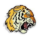 Logo della tigre Immagine Stock