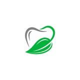 Logo dentario di vettore Immagine Stock