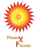 Logo design. Flower logo design with phoenix colors Royalty Free Stock Images