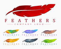Logo design with bird feather. Abstract polygonal element Stock Photos