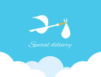 Logo design element Special delivery Royalty Free Stock Photos