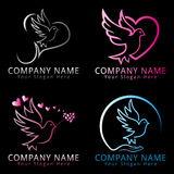 Logo di concetto del piccione dell'uccello Fotografia Stock Libera da Diritti