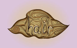Logo di scarabocchio di Wave con i capelli dell'iscrizione Illustrazione di vettore Fotografia Stock