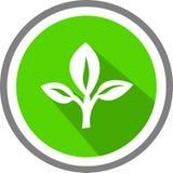 Logo e modello di immagine degli alberi Immagine Stock Libera da Diritti