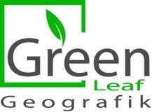 Logo e modello verdi della foglia Fotografia Stock