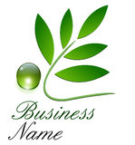 Logo ecological, green. Leaves and dew drop Royalty Free Stock Photo