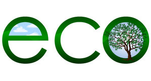 Logo ecologico o emblema Fotografia Stock Libera da Diritti