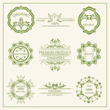 Logo, elements flora, labels Royalty Free Stock Image