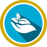 Logo et calibre organiques de photos illustration de vecteur