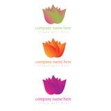 Logo floreale dell'illustrazione in vari colori Immagine Stock